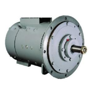 Двигатель экскаватора ЭКГ-5А