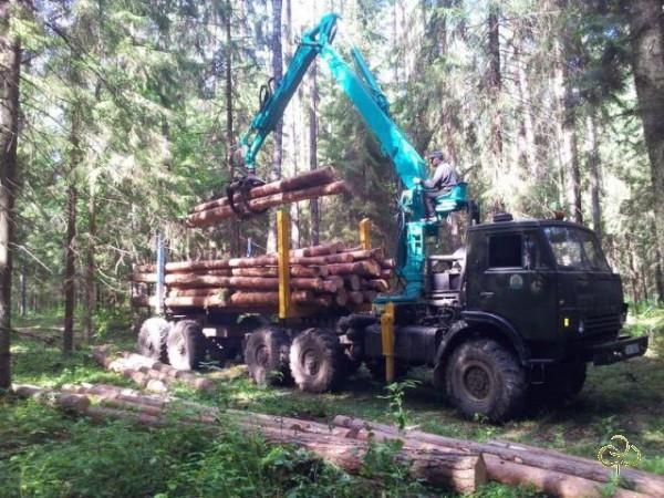 Лесовоз с манипулятором на базе шасси камаз 4310