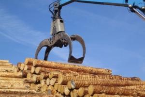 Виды выполняемых работ грейфером для леса