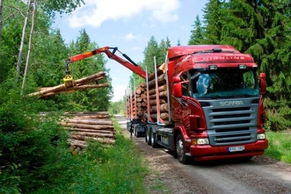 Характеристики, особенности и устройство лесовоза скания g440